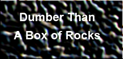 Dumber Than a Box of Rocks - Is there a lesson to learn?